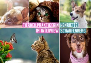 interview_tierheilpraktikerin